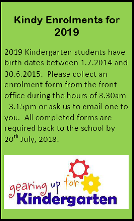 Kindy enrolments 2019